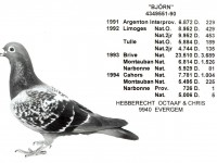 Chris Hebberecht pigeon BE90-4349551