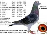 Chris Hebberecht pigeon BE99-4262210